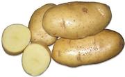 Доставка овощей и фруктов и сухофруктов